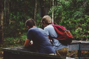 friendship, nature landscape, outdoor